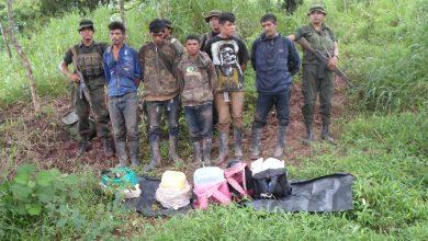 Los cinco detenidos por las tropas del Batallón Ecológico eran traficantes de marihuana.