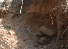Derrumbe deja un minero artesanal muerto en Siuna